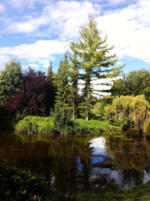 ogrod w przelewicach architektura krajobrazu parki 4