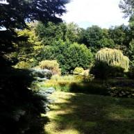 Ogrodowe kompozycje z zieleni niskiej średiniej i wysokiej