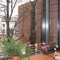 biblioteka miejska w Jaworznie 17