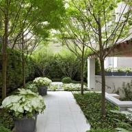 Mały ogródek z nisko przyciętymi drzewkami, zielenią w parterze i donicami