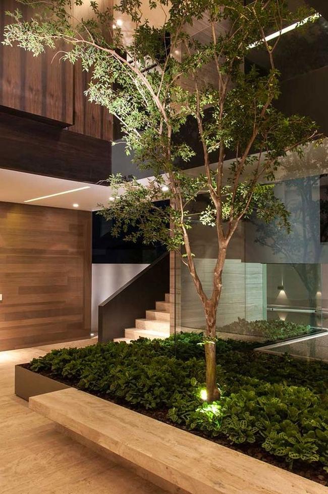 zieleń we wnętrzu inspiracje interior garden 06