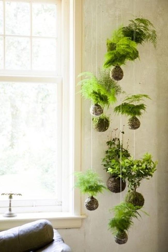 zieleń we wnętrzu inspiracje interior garden 07