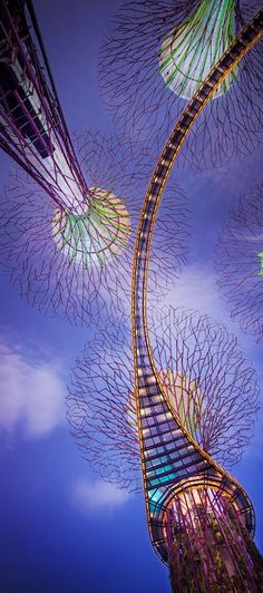 Supertrees in Gardens by the Bay, Projekt: Grand Associates, Gustafson Poter, Singapur