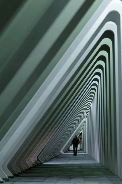 Liège Guillemins Railway Station, Projekt: Santiago Calatrava, Belgia