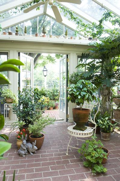 Ogród_zimowy_domowa_szklarnia_patio_ogród_w_domu_zieleń_pomysł_na_19