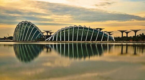 drzewa_w_singapurze_bioarchitektura_zieleń_ogrody_w_miescie_4
