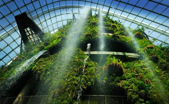 drzewa_w_singapurze_bioarchitektura_zieleń_ogrody_w_miescie_5