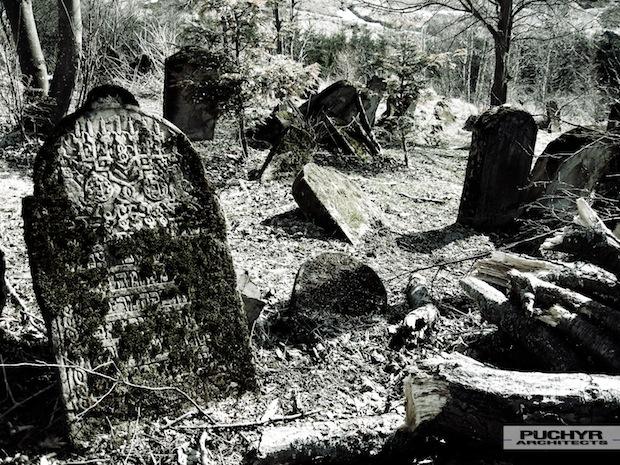 Cmentarz_Zydowski_w_lutowiskach_opuszczony_zaniedbany_kirkut_5