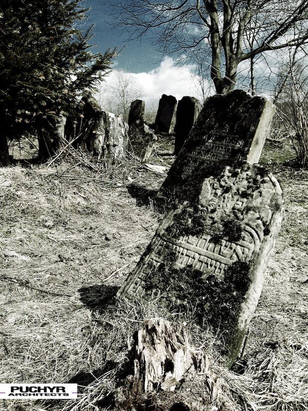 Cmentarz_Zydowski_w_lutowiskach_opuszczony_zaniedbany_kirkut_6
