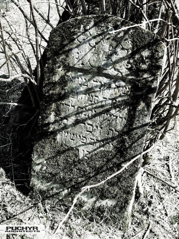 Cmentarz_Zydowski_w_lutowiskach_opuszczony_zaniedbany_kirkut_7