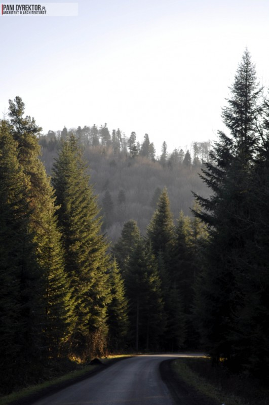Liszna-piekna-miejscowosc-w-sercu-lasu-jak-wybrac-dzialke-81