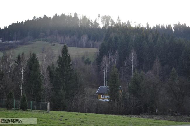 Liszna-piekna-miejscowosc-w-sercu-lasu-jak-wybrac-dzialke-71