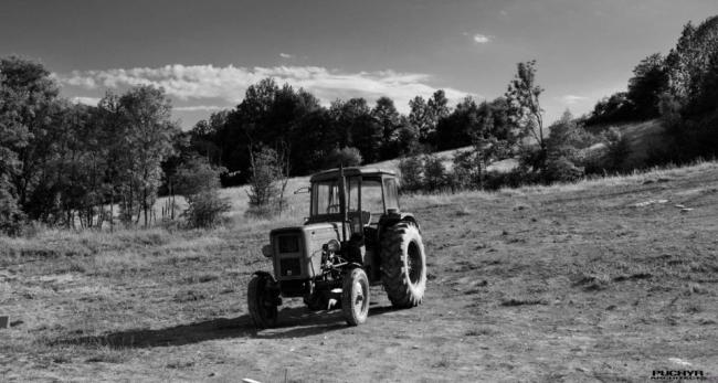 Moje-kochane-maszyny-budowlane-traktor-URSUS-romantyczny-widok-w-polu-11