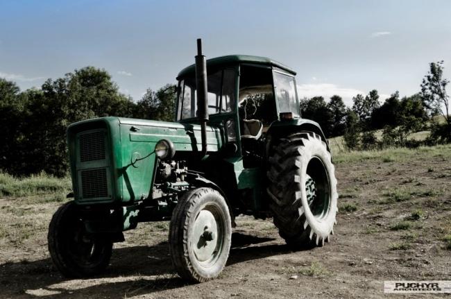 Moje-kochane-maszyny-budowlane-traktor-URSUS-romantyczny-widok-w-polu-33