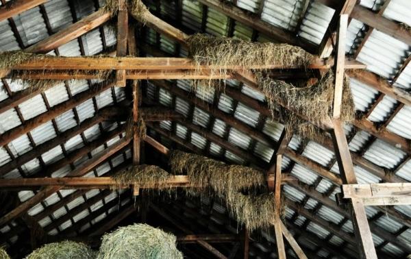 przebudowa-stodoły-na-budynek-mieszkalny-1