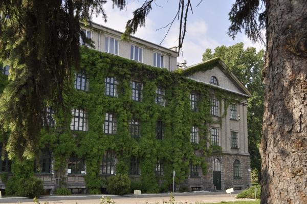 Bluszcz-ktory-nie-niszczy-elewacji-budynku-pomaga-w-odwilgotnieniu-zielen-wertykalna-7