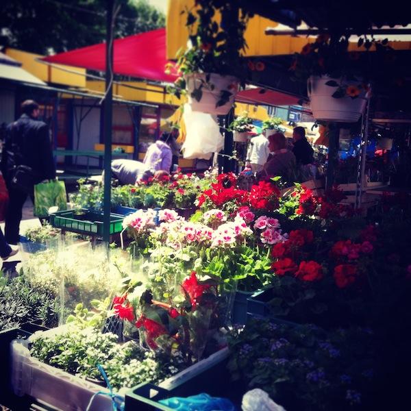 Targ na Targowej w Rzeszowie-dlaczego place targowe sa wazne dla miasta-6a