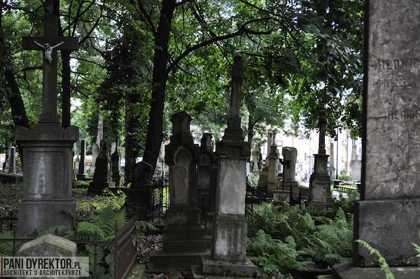 Stary_Cmentarz_w_Rzeszowie_Dawno_temu_w_domu_miejska_przestrzeń-1