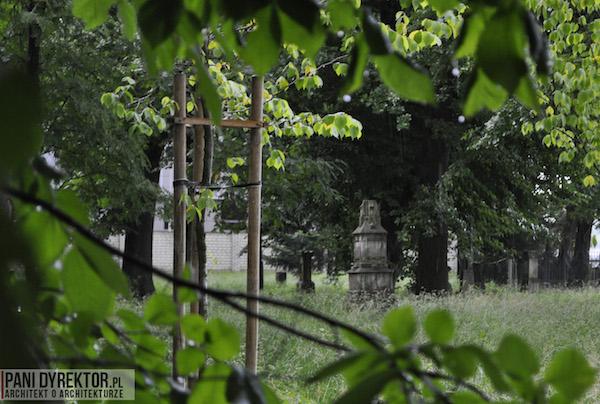 Stary_Cmentarz_w_Rzeszowie_Dawno_temu_w_domu_miejska_przestrzeń-10