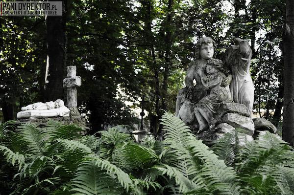 Stary_Cmentarz_w_Rzeszowie_Dawno_temu_w_domu_miejska_przestrzeń-11