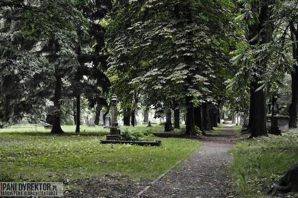 Stary_Cmentarz_w_Rzeszowie_Dawno_temu_w_domu_miejska_przestrzeń-13
