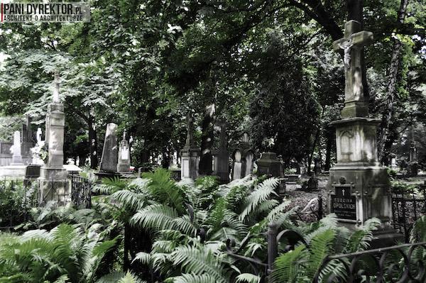 Stary_Cmentarz_w_Rzeszowie_Dawno_temu_w_domu_miejska_przestrzeń-16