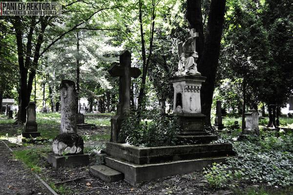 Stary_Cmentarz_w_Rzeszowie_Dawno_temu_w_domu_miejska_przestrzeń-19