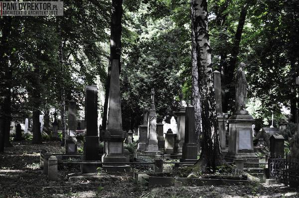 Stary_Cmentarz_w_Rzeszowie_Dawno_temu_w_domu_miejska_przestrzeń-3