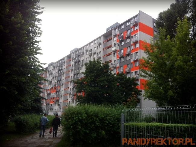 malowanie-bloków-elewacje-kolorystyka-blokowiska-polskie-remonty-polskie-żylety-1