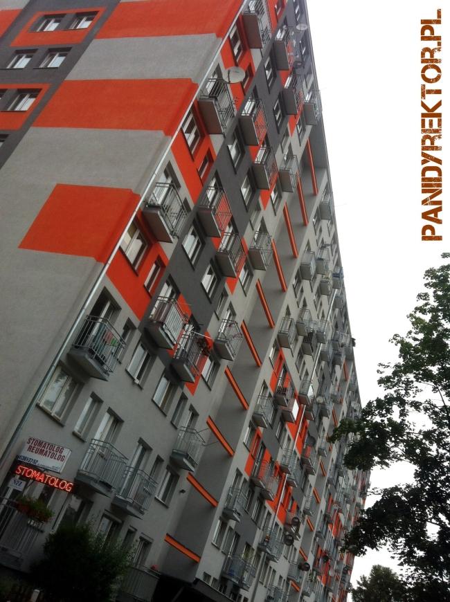 malowanie-bloków-elewacje-kolorystyka-blokowiska-polskie-remonty-polskie-żylety-2