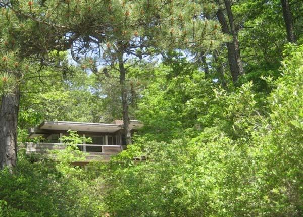 nowoczesny-dom-w-sercu-lasu-minimalizm-bauhausu-drewno-przebudowa-modernizm-restaurowanie-19 copy