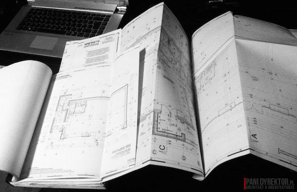 Pani Dyrektor Architekt o Architekturze Blog Architektoniczny-projekt typowy czy indywidualny-2