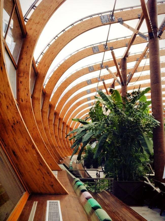 Blog-architektoniczny-pani-dyrektor-impresje-6-aqua-park-konstrukcja-drewno-klejone-słowacja