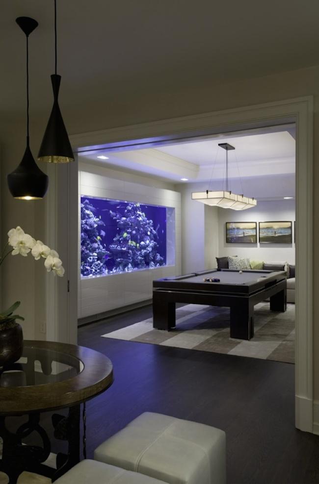 akwariu-w-domu-pomysl-na-ciekawe-rozwiazania-rybki-we-wentrzu-3