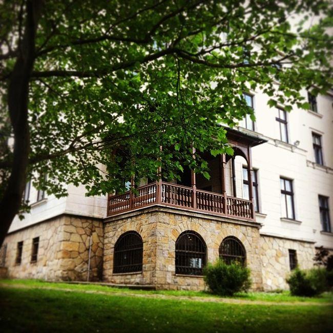 biblioteka-miejska-w-sanoku-blog-architektoniczny-pani-dyrektor-1