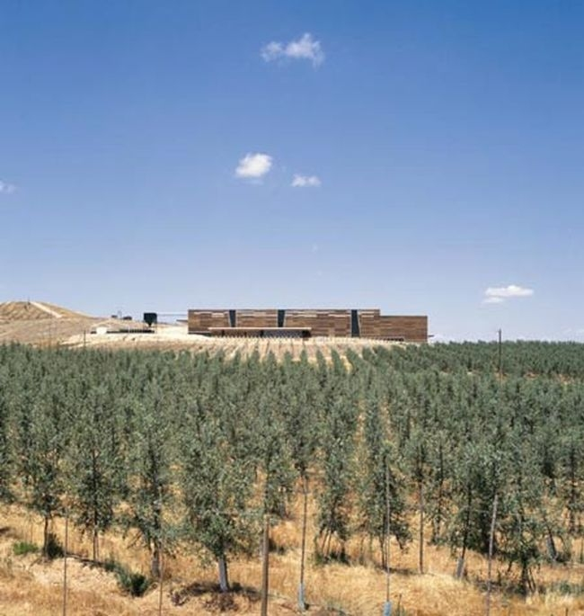 nowoczesny_budynek_przemysłowy_projekt_realizacje_obiekt_przemysłowy_budynek_fabryka_oliwek_w_chile_41