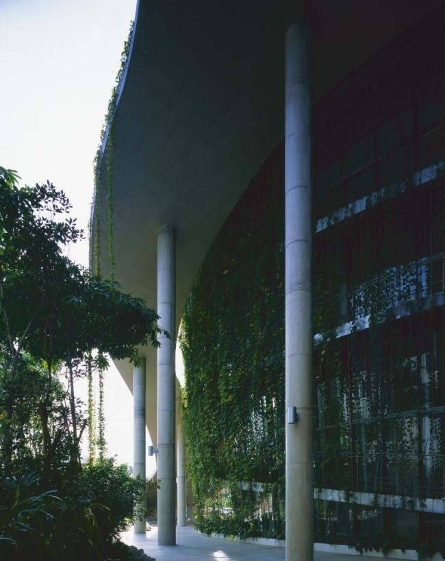 nowoczesny_budynek_przemysłowy_zieleń_w_budynku_budynek_w_zieleni_nowoczesny_projekt_realizacja_03