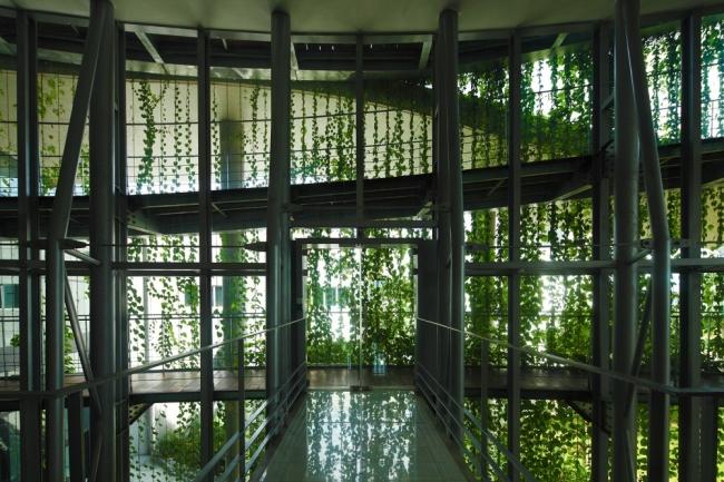 nowoczesny_budynek_przemysłowy_zieleń_w_budynku_budynek_w_zieleni_nowoczesny_projekt_realizacja_13