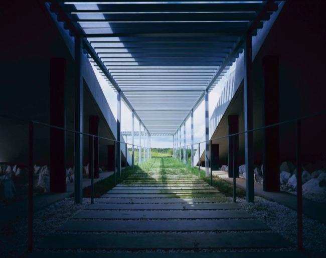 nowoczesny_budynek_przemysłowy_zieleń_w_budynku_budynek_w_zieleni_nowoczesny_projekt_realizacja_20
