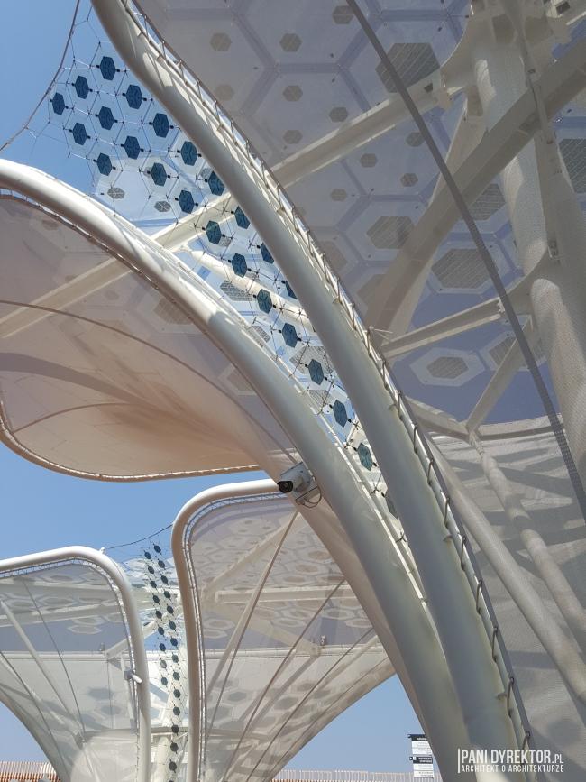 expo-2015-milano-wystawa-swiatowa-nowoczesna-architektura-materialy-wspolczesna-budynki-pawilony-545