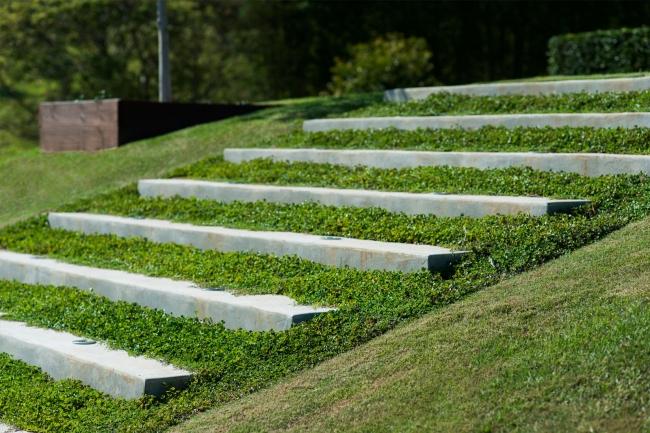 piękny ogródek zieleń przed wejściem do domu inspiracje pomysły na piękny ogródek zieleń 64