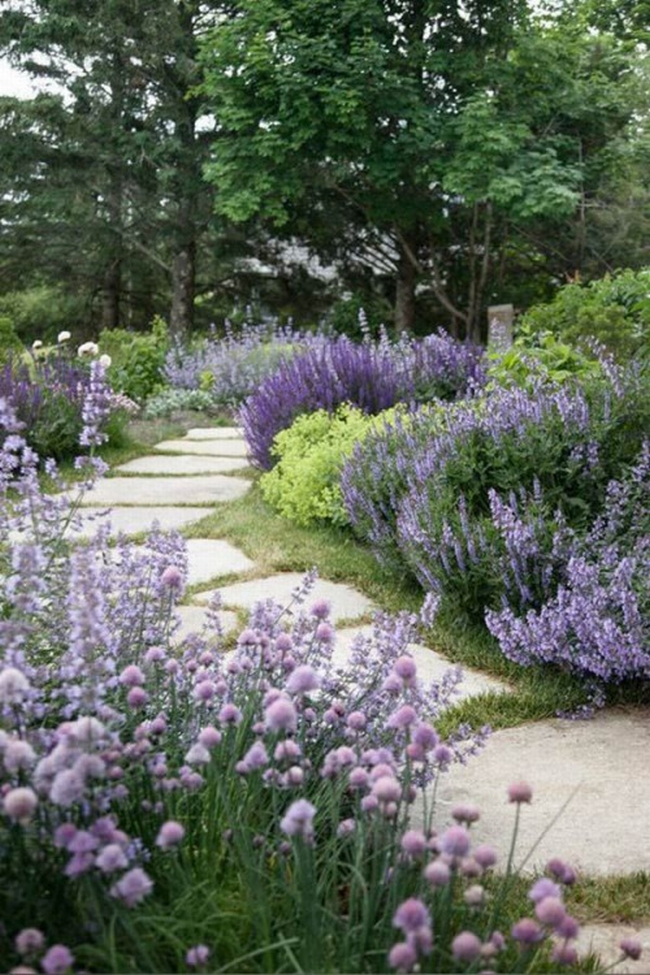 zieleń przed domem piękny ogródek zieleń przed wejściem do domu inspiracje pomysły na piękny ogródek zieleń 105