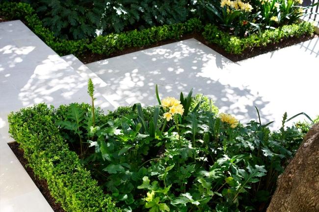 zieleń przed domem piękny ogródek zieleń przed wejściem do domu inspiracje pomysły na piękny ogródek zieleń 112