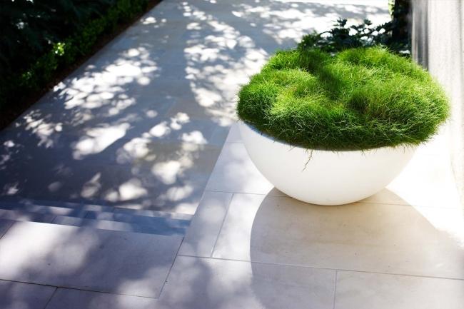 zieleń przed domem piękny ogródek zieleń przed wejściem do domu inspiracje pomysły na piękny ogródek zieleń 113
