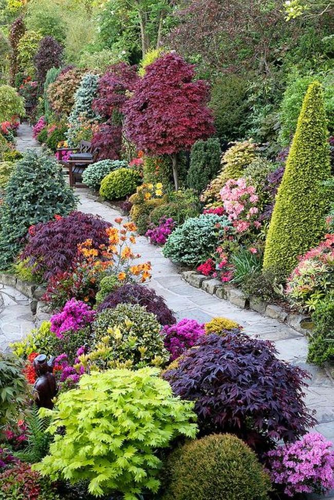 zieleń przed domem piękny ogródek zieleń przed wejściem do domu inspiracje pomysły na piękny ogródek zieleń 57
