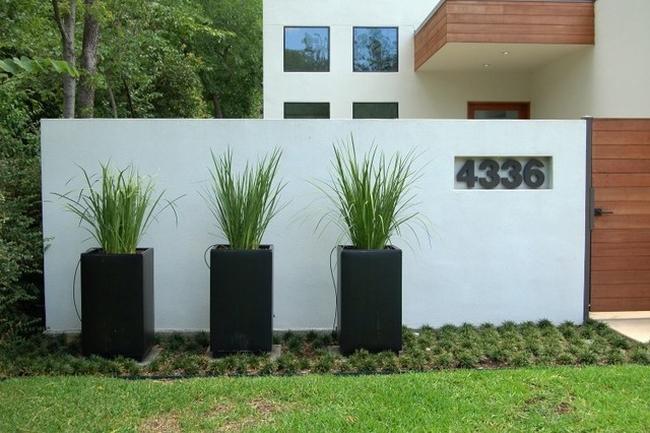 Znalezione obrazy dla zapytania zieleń przed domem