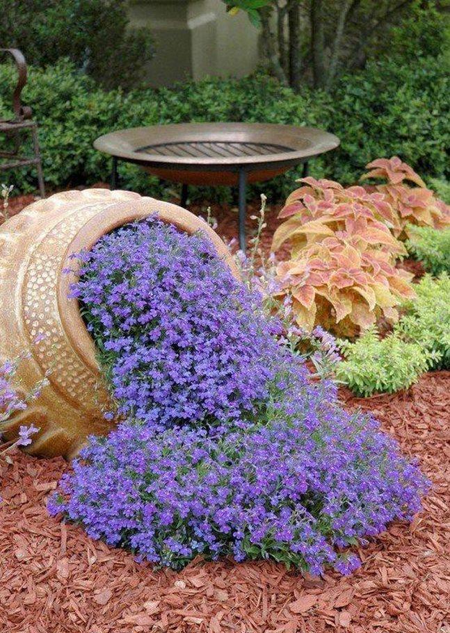 zieleń przed domem piękny ogródek zieleń przed wejściem do domu inspiracje pomysły na piękny ogródek zieleń 89