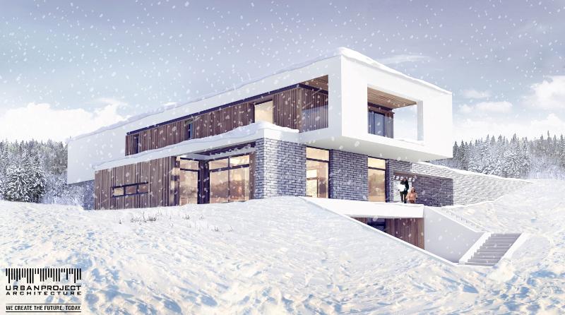 imitacja cegły na elewacji, projekt elewacji, zamienniki cegły, tańsze sposoby na ceglany mur, remont, zmiana elewacji