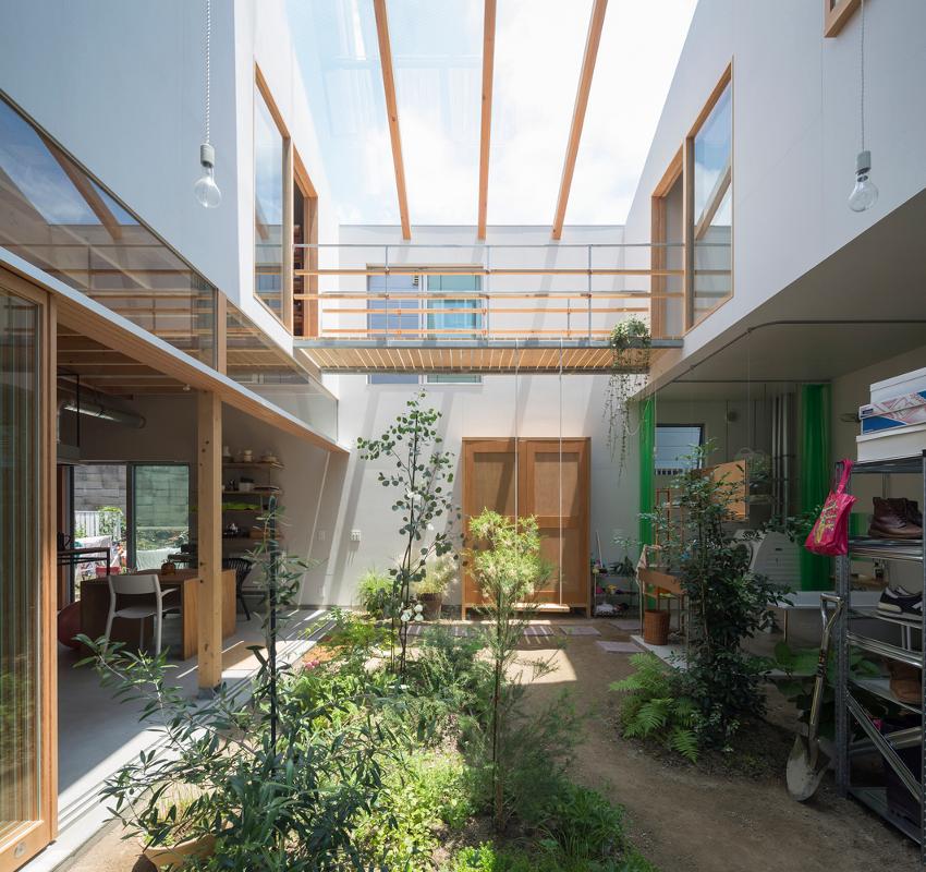 jak zaprojektować ogród zimowy całoroczny zieleń w domu palmy rośliny egzotyczne, ogrody wewnętrzne drzewo wewnątrz domu